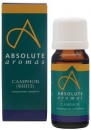 Absolute Aromas Camphor Pure Essential Oil