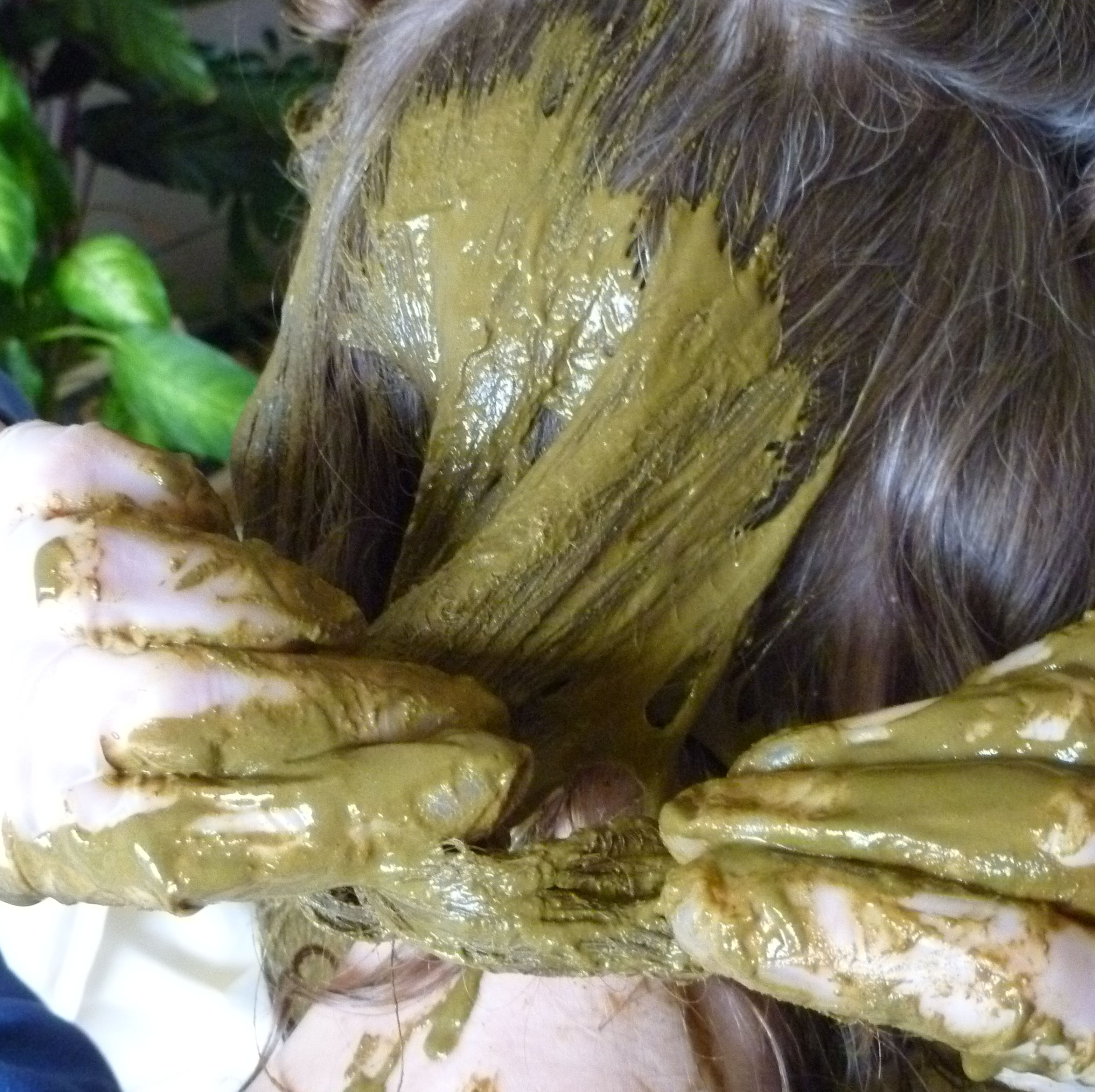 coating layers of hair with organic henna