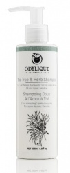 Odylique Organic Tea Tree Shampoo